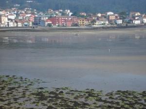 4 Bassa Marea